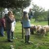 enfants_moutons